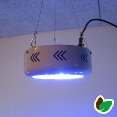 Vækstlys Blå - 75W UFO - 25 LED