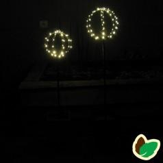 Julebelysning - Kuppeltræer
