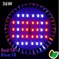 Vækstlys pære - 36W - 36 LED/SMD - E27