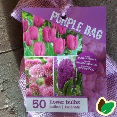 Tulipanløg, Hyacintløg og Prydløg - The Purple Bag - 50 Løg