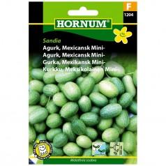 Agurkefrø Sandia - Mexicansk Miniagurk