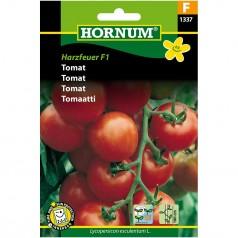 Tomatfrø Harzfeuer F1