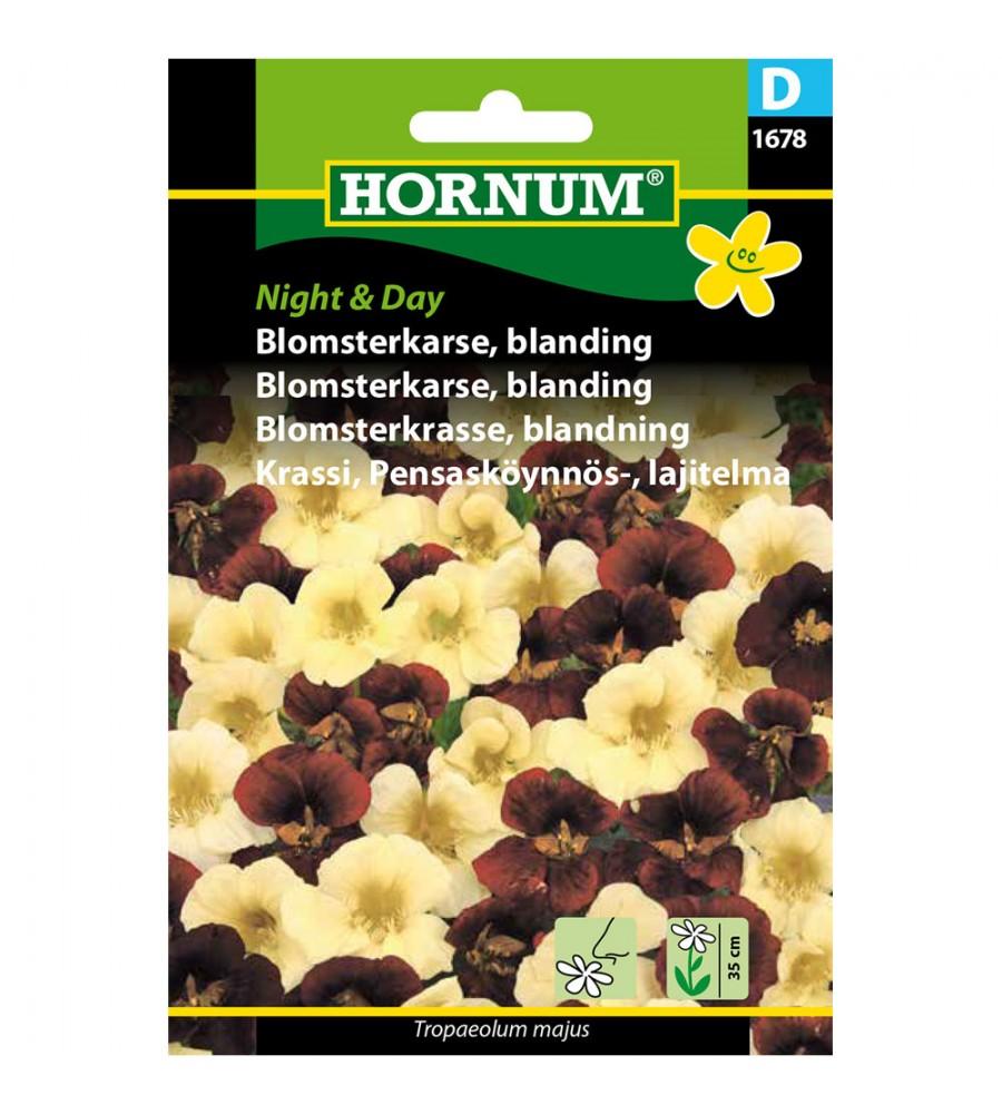Blomsterkarse Frø - Night & Day Blanding