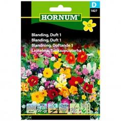 Blomsterblanding Frø - Duft 1