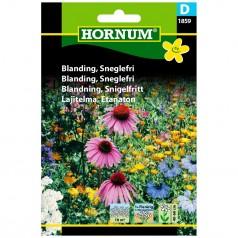 Blomsterblanding Frø - Sneglefri