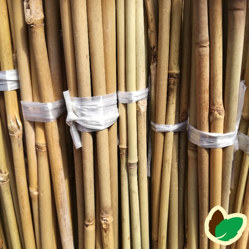 Bambuspinde 150 cm.