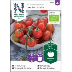 Økologisk Cherrytomat frø