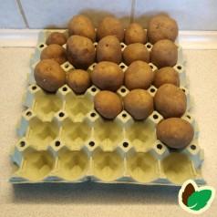 Æggebakke til forspiring af løg & kartofler