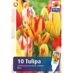 Tulipanløg - Multiflowering mix - 10 Løg