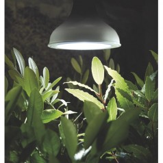 Vækstlys LED-lampe 18W