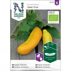Økologisk Agurk frø, Frilands- 'Gele Tros'