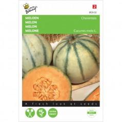 Cantaloup melon frø