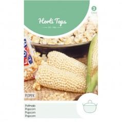 Popcorn majs frø, Plomyk