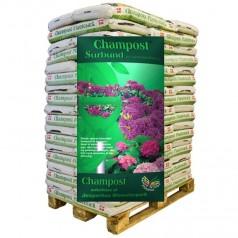 Champost Surbund
