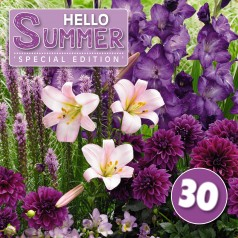 Blomsterløg mix 'Hello Summer! Purple' 30 løg