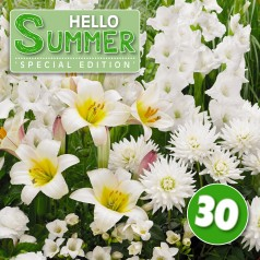 Blomsterløg mix 'Hello Summer! White' 30 løg