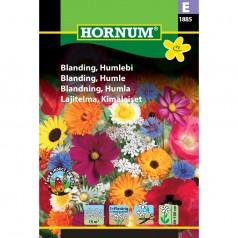 Blomsterblanding frø, Humlebi