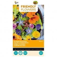 Blomsterblanding frø 'Spiselige blomster'