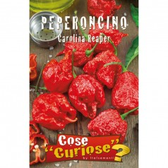 Chilifrø, Carolina Reaper