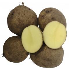 Folva Læggekartofler -- 10 Kg.