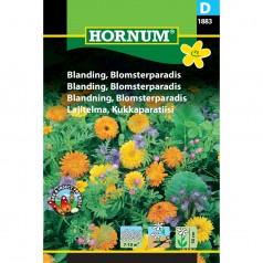Blomsterblanding frø, Blomsterparadis
