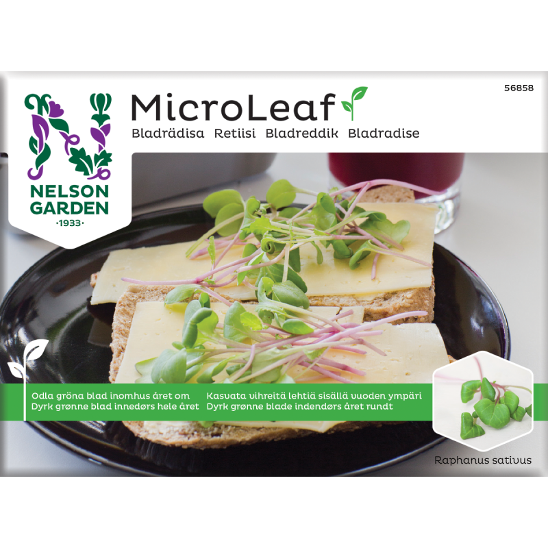 Micro Leaf frø, Bladradise - NG