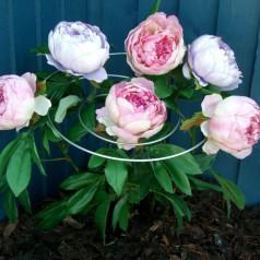 Plantestøtte - Spiral til buket blomster