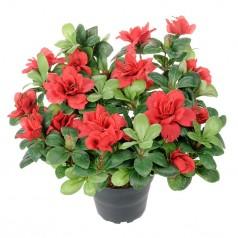 Azalea - Rød - Kunstig Potteplante