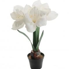 Amaryllis - Hvid - Kunstig potteplante