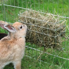 Høhæk til kanin 25 x 17 cm