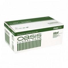 20Stk, Oasis blokke 23X11X8