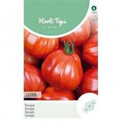 Tomatfrø, Liguria - Horti Tops