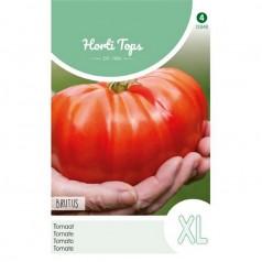 Tomatfrø, Brutus - Horti Tops