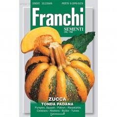Græskarfrø, Tonda Padana - Franchi