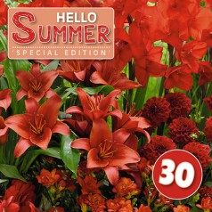 Blomsterløg mix - Hello Summer Red - 30 løg