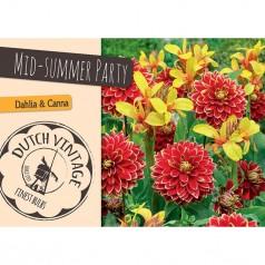 Blomsterløg Mix - Mid-Summer Party - 2 stk - Dutch Vintage