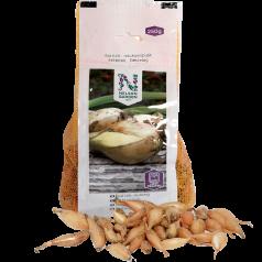 Bananløg - Aflang Gul løg - Sætteløg 250 gram