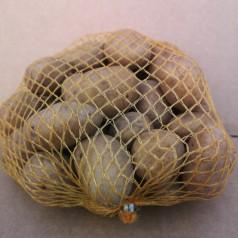 Agria Læggekartofler - 1 Kg.
