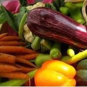 Urtefrø & Grøntsagsfrø til selvdyrkere