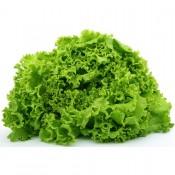 Salat Frø