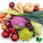 Se alle grøntsags og urtefrø  - Stort udvalg af Grøntsagsfrø - Kridtvejs Planter